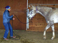 The handler has shifted her weight back and is combing the rope with open hands to invite her horse forward.