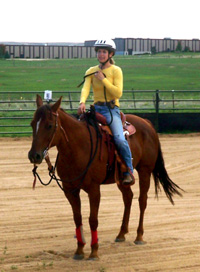 To ask your horse to walk off, first bring the life up in your body as you give the horse's ribs a squeeze with your legs (stage 1 pressure). If your horse hasn't walked off, encourage them by rhythmically swinging the end of the leadrope against your shoulders, going shoulder to shoulder (stage 2 pressure).