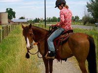 If the horse has not stopped to your first two requests, slide your hand down the rein and bend their head and neck around (lateral flexion) making it difficult for them to continue walking forward.